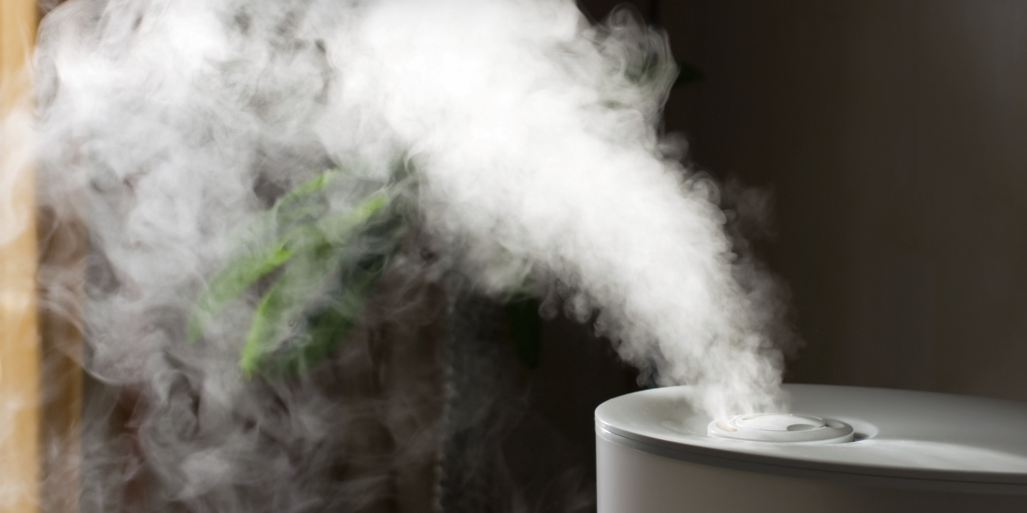 The Best Whole House Humidifier