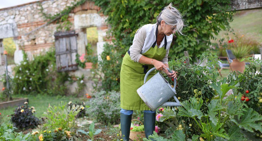 Eco Friendly Garden Tips
