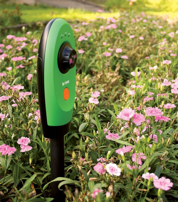 garden-monitor-camera