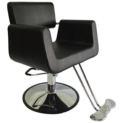 D Salon Hydraulic Comfort Styling Salon Barber Chair – DS-SC2001