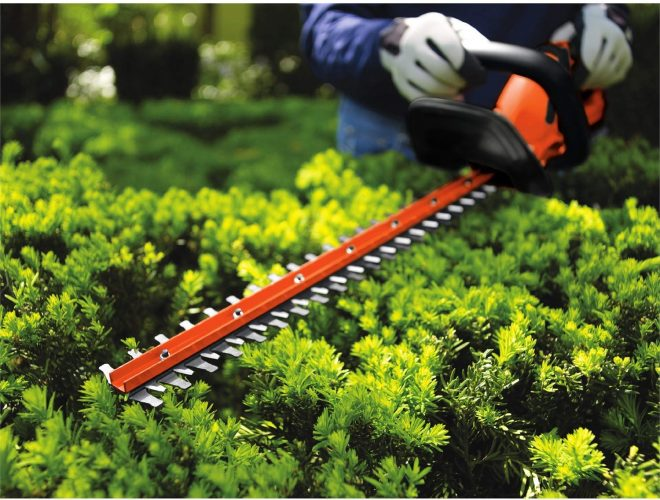 Black and Decker Hedge Trimmer Blade Trimming