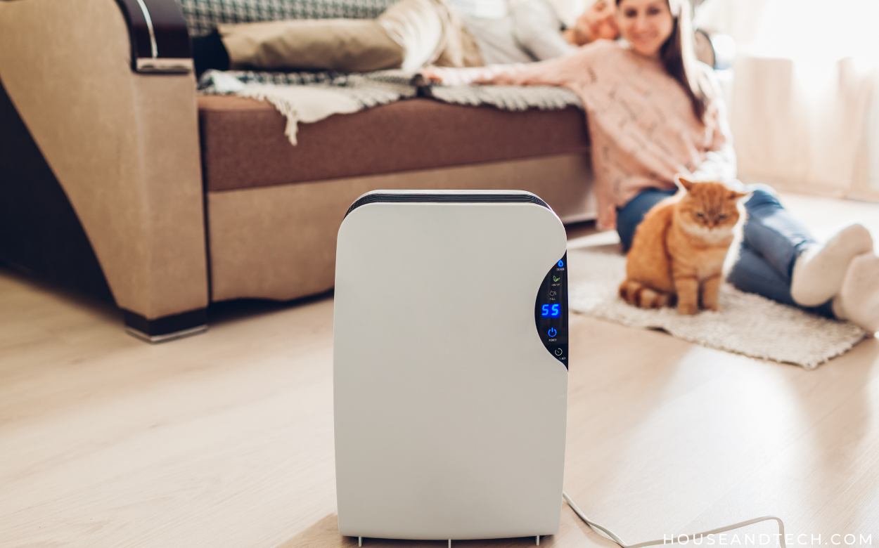 The Best Portable Air Purifiers